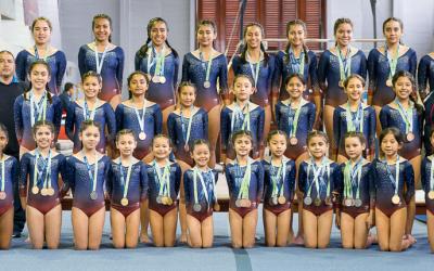 Campeonato de la Federación Deportiva Peruana de Gimnasia